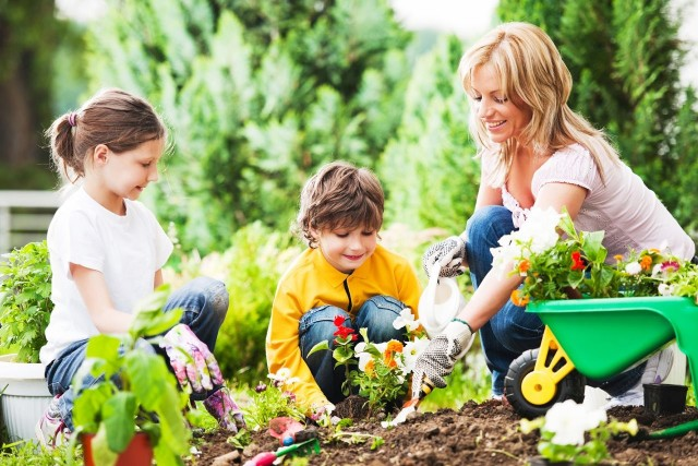 3 Homeowners Insurance Tips to Know Before Planting Flowers or Vegetables